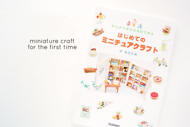 Miniature Craft for the First Time