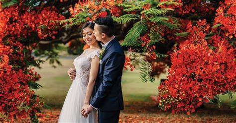 Wedding Planner Brisbane   Perfect Story Weddings and Events