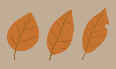 枯葉のイラスト 2 Ec Designデザイン