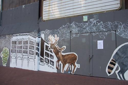 deer on the street