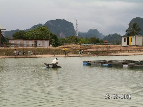 Tg Rambutan Pond 03