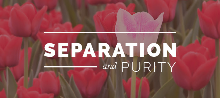 Previous post: Separation and Purity