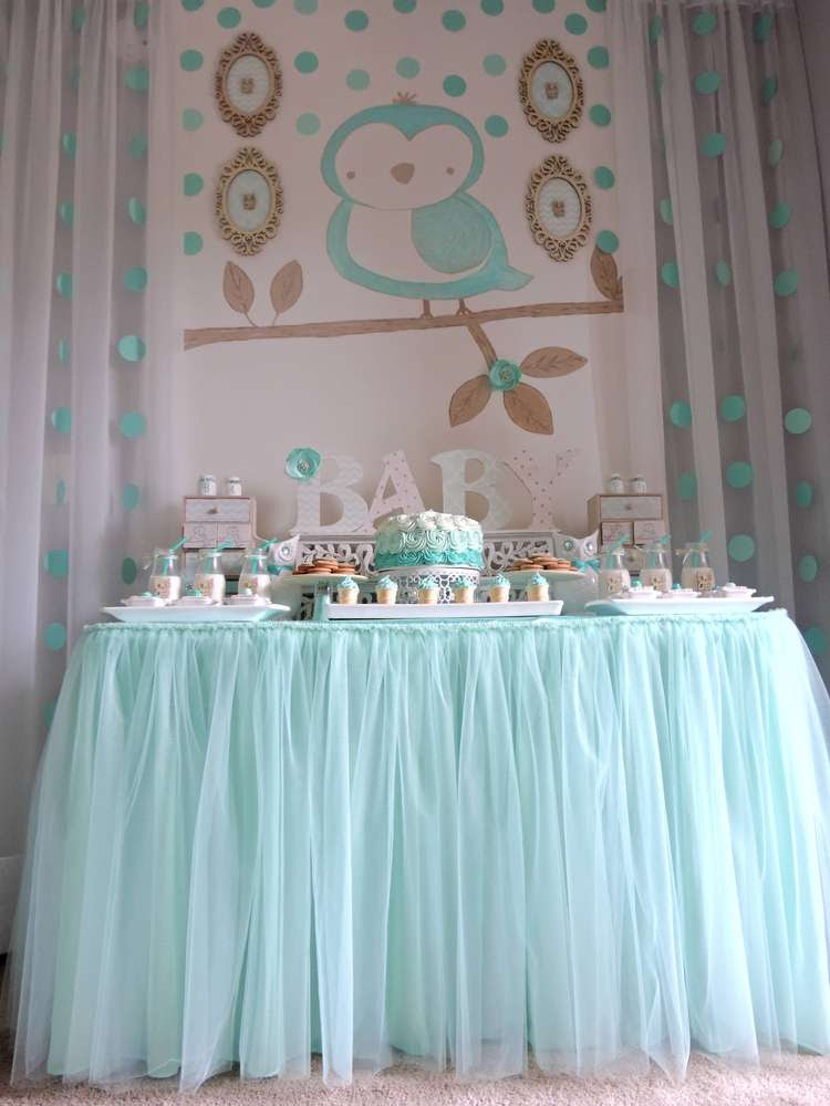 Welcome Home Baby Owl Shower Baby Shower Ideas Themes Games
