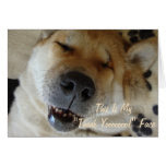 funny Japanese akita with cute smile thank you Greeting Card