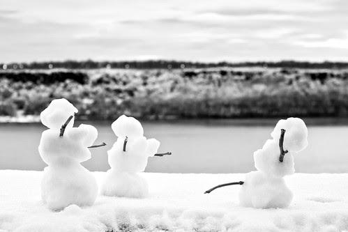 Mini Snow Family