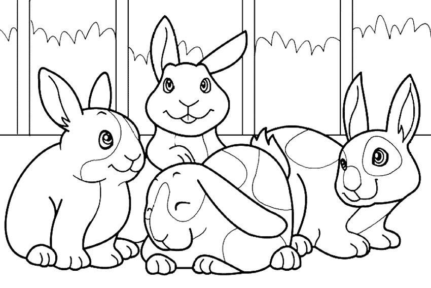Conejos Para Colorear Imágenes Y Fotos
