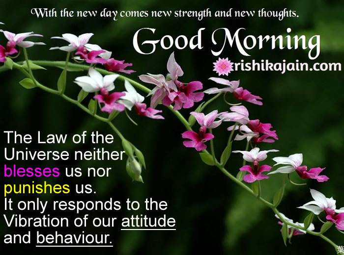 Good Morning Have A Wonderful Day Inspirational Quotes Pictures