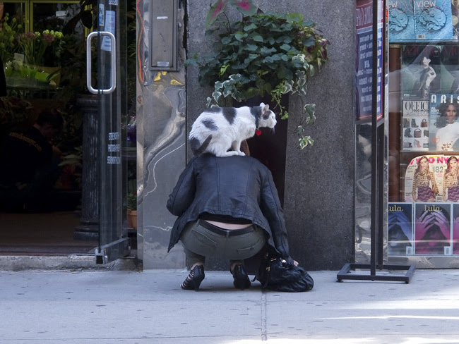 The Woman with a Cat on her back