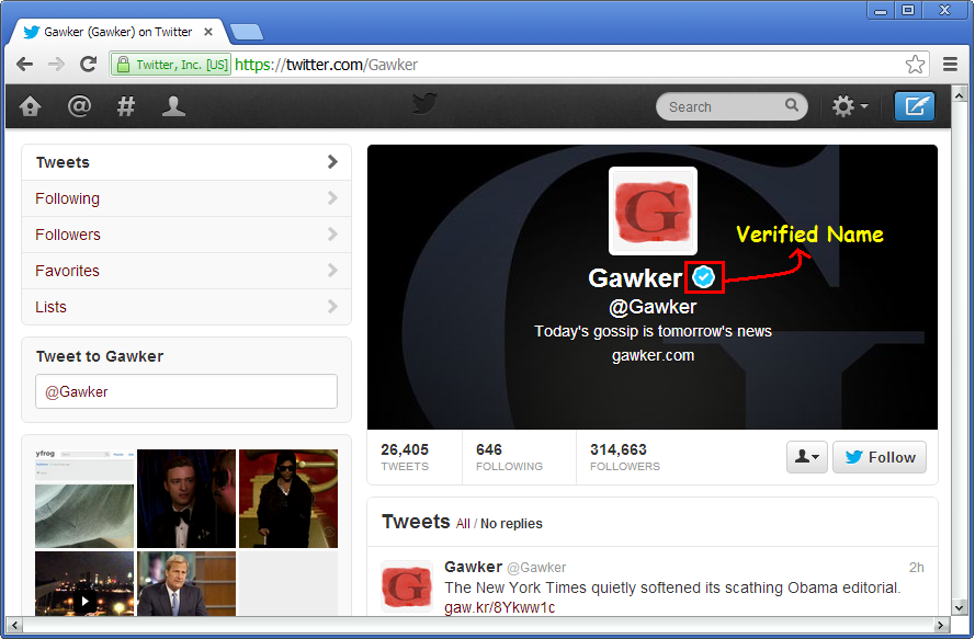 Verified Twitter Profile