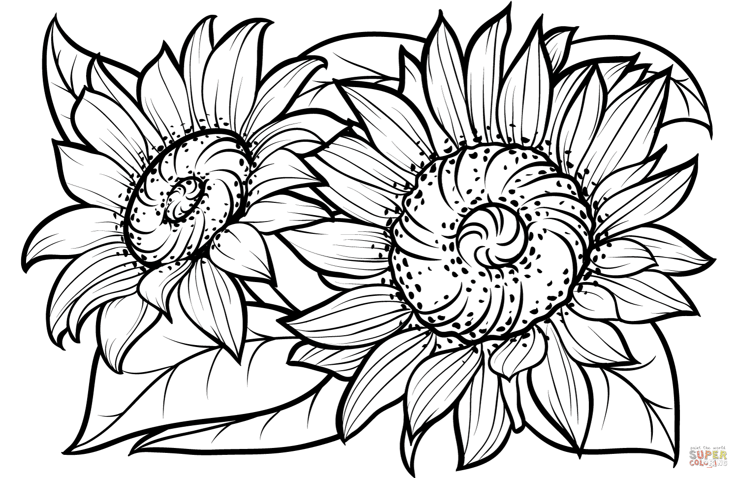 Sunflowers coloring page | Free Printable Coloring Pages