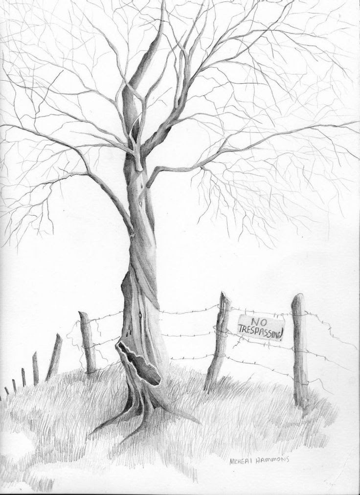 Simple Nature Drawing At Getdrawingscom Free For Personal Use