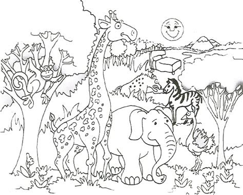 african animal coloring page pinterest african animal