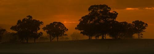 Australian Landscape Dusk