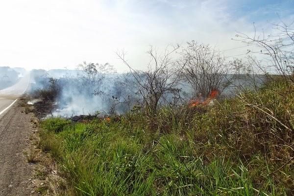 Incêndio em mata seca as margens da BR 406 em Ceará-Mirim prejudica trafego de veículos