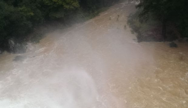Downstream from Whangarei Falls with picnic table under water bottom right.
