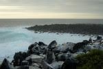 Galapagos, Espanola Island