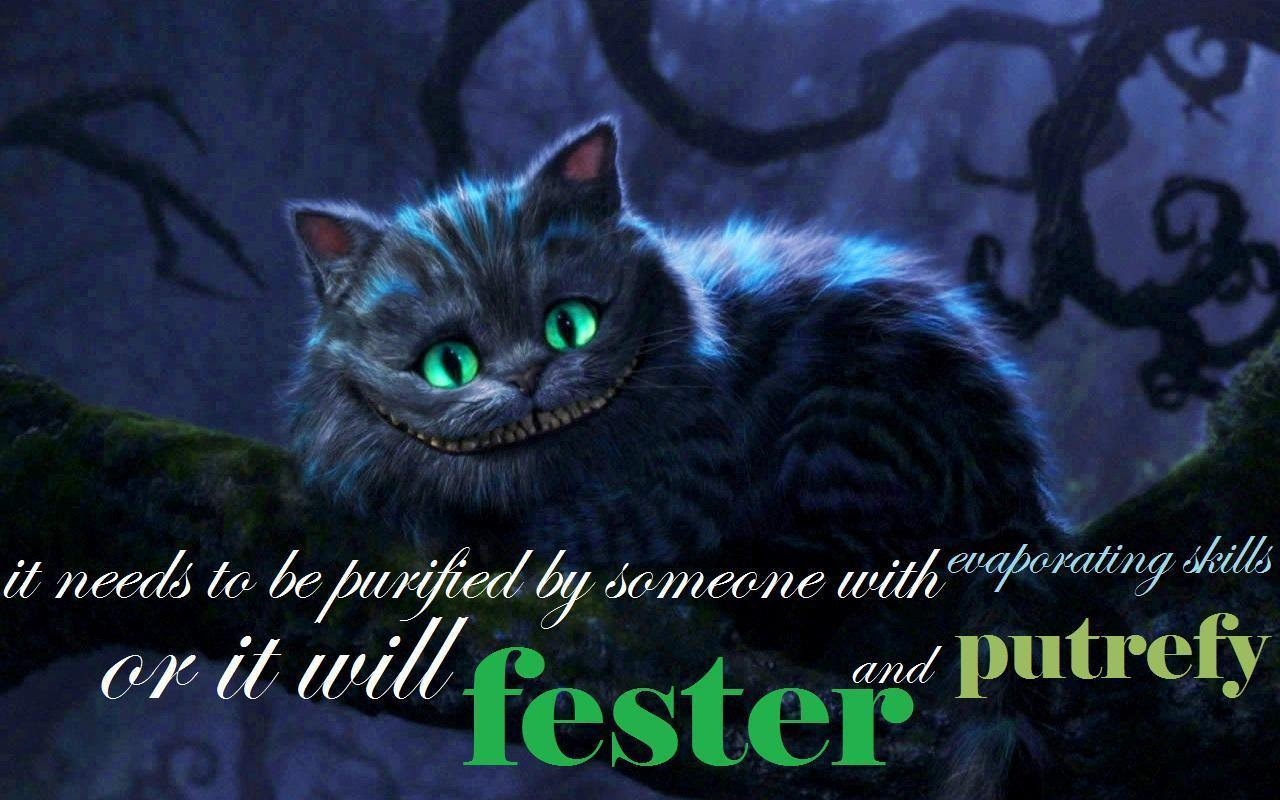 The Cheshire Cat Imagens The Cheshire Cat Hd Wallpaper And