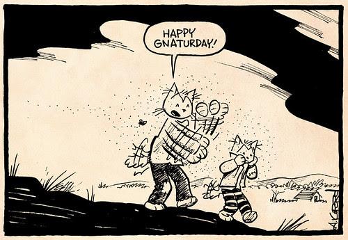 Laugh-Out-Loud Cats #2422 by Ape Lad