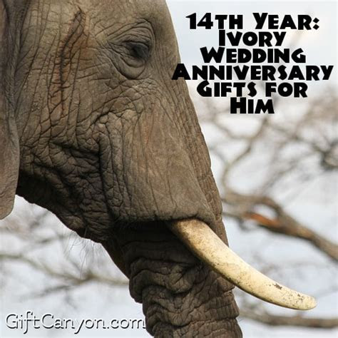 14th Year: Ivory Wedding Anniversary Gifts for Him   Gift