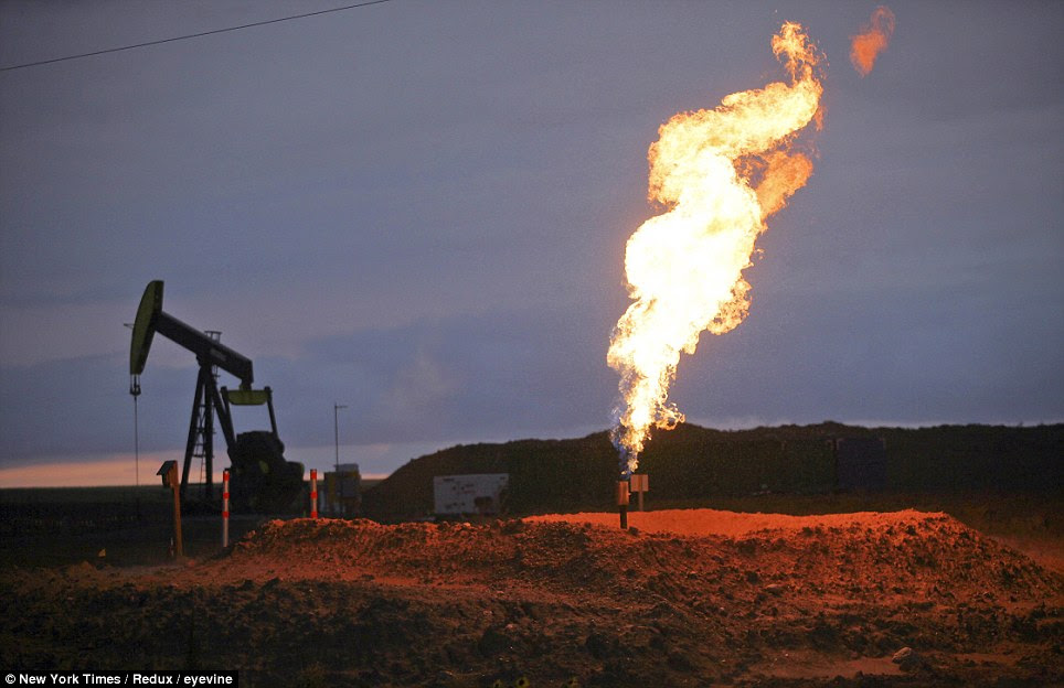 Up in flames: A ground flare burns gas at a well near Ray, North Dakota, where about 30 per cent of the natural gas produced is burned as waste