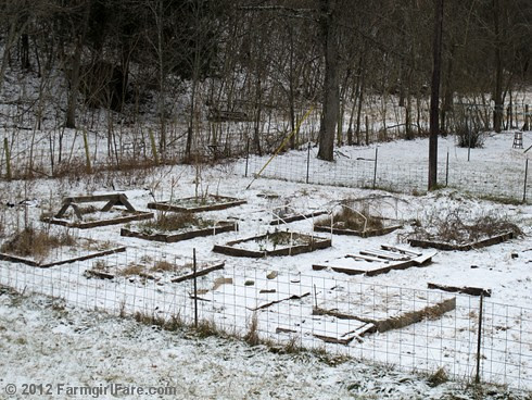 Southern half of the snowy kitchen garden - FarmgirlFare.com