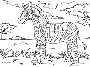 Dibujos De Animales De La Selva Para Colorear Paracolorearnet
