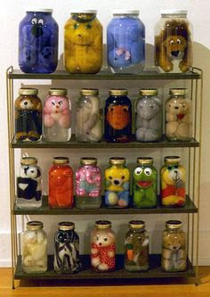 Pickled and Perfectly Preserved Plush Toys by Iain Baxter