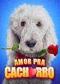 Amor Para Cachorro   filmes-netflix.blogspot.com