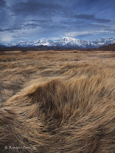 Owens Valley Winter por Barrett Donovan