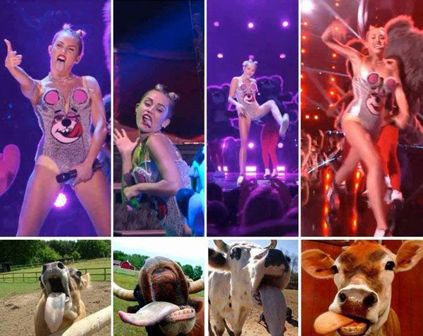 Miley Cyrus impersonates bovines at the 2013 MTV Video Music Awards.