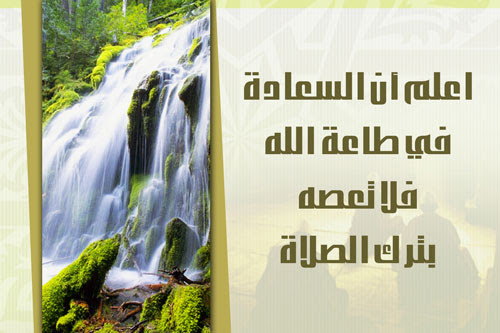 http://images.abunawaf.com/2006/02/salat4.jpg