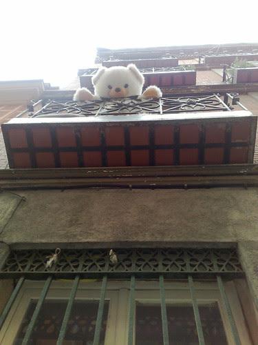 foto en la que se ve un oso de peluche gigante asomado a un balcón