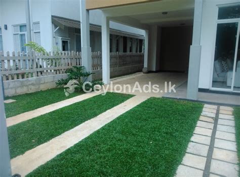Muthupalasa garden service and grass suppliers for sell