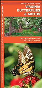 Virginia Butterflies Moths A Folding Pocket Guide To Familiar Species Pocket Naturalist Guide Series