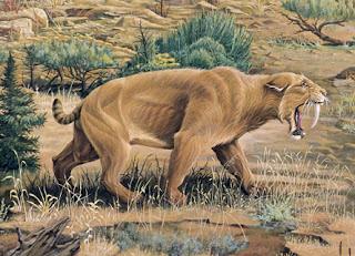 Hewan purba yaitu binatang yang hidup pada masa lampau dan kini telah  punah 5 Hewan Purba Paling Ganas di Masa Lampau