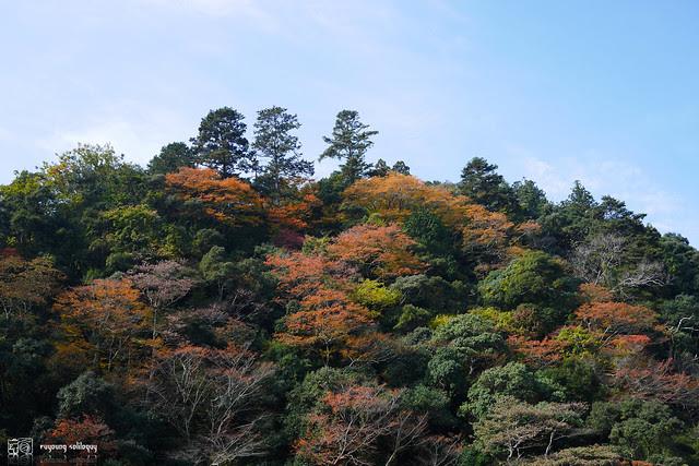 Panasonic_GX7_Kyoto_11