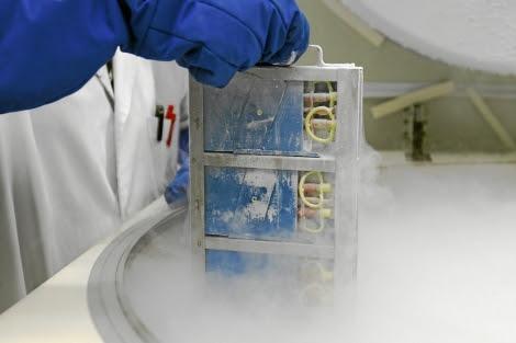Congelador donde se almacenan muestras de sangre de cordón. | Begoña Rivas