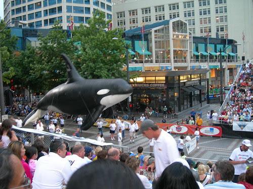 2009-07-25 Torchlight Parade (18)