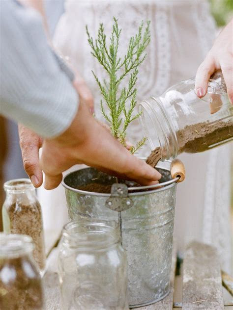 Plant a tree during your wedding ceremony to signify the