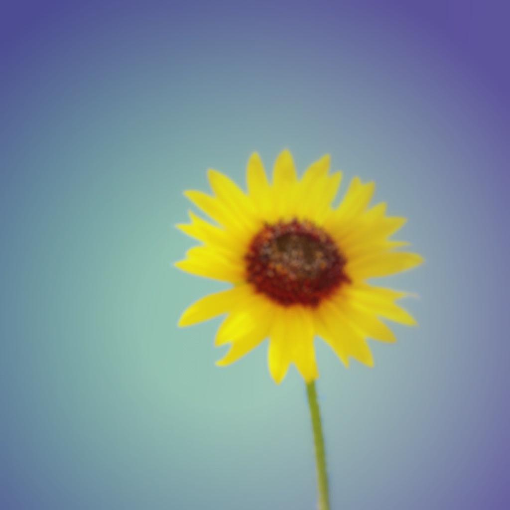 写真を編集するソフト - Photoshopの代わり! 使える無料写真編集ソフト10選