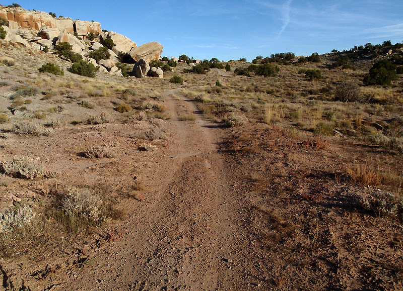 Old, narrow, two-track makes up some segments of the Wrangler Loop.