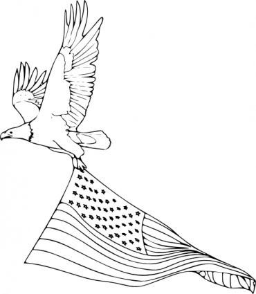 Mewarnai Buku Elang Botak Clip Art Vektor Clip Art Vektor Gratis