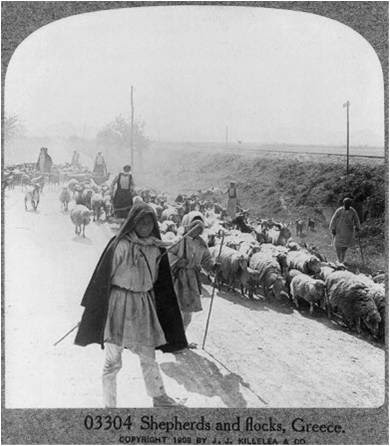 Βοσκοι   1909