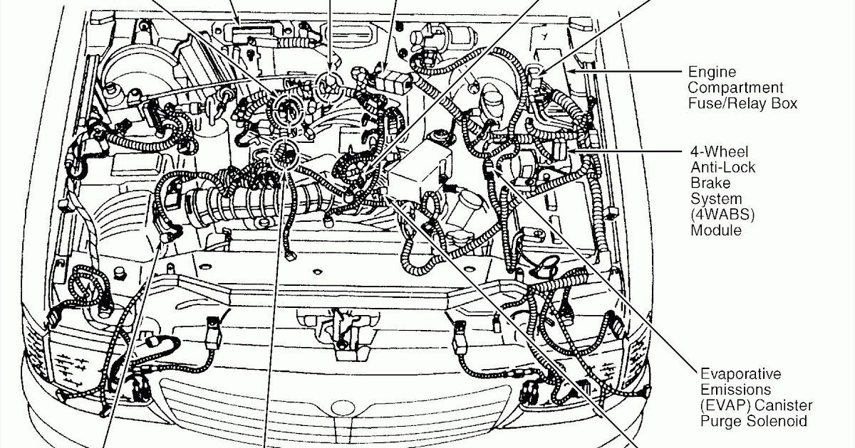 1997 Nissan Sentra Engine Diagram