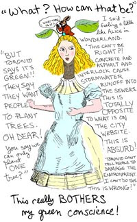 alice drawing from Paradise Unpaved by Franke James