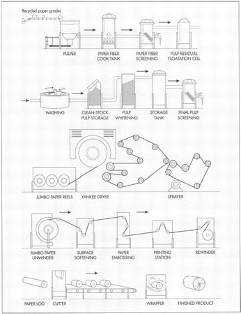 A diagram of toilet paper manufacturing process.