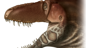 Así era la cara real de un tiranosaurio