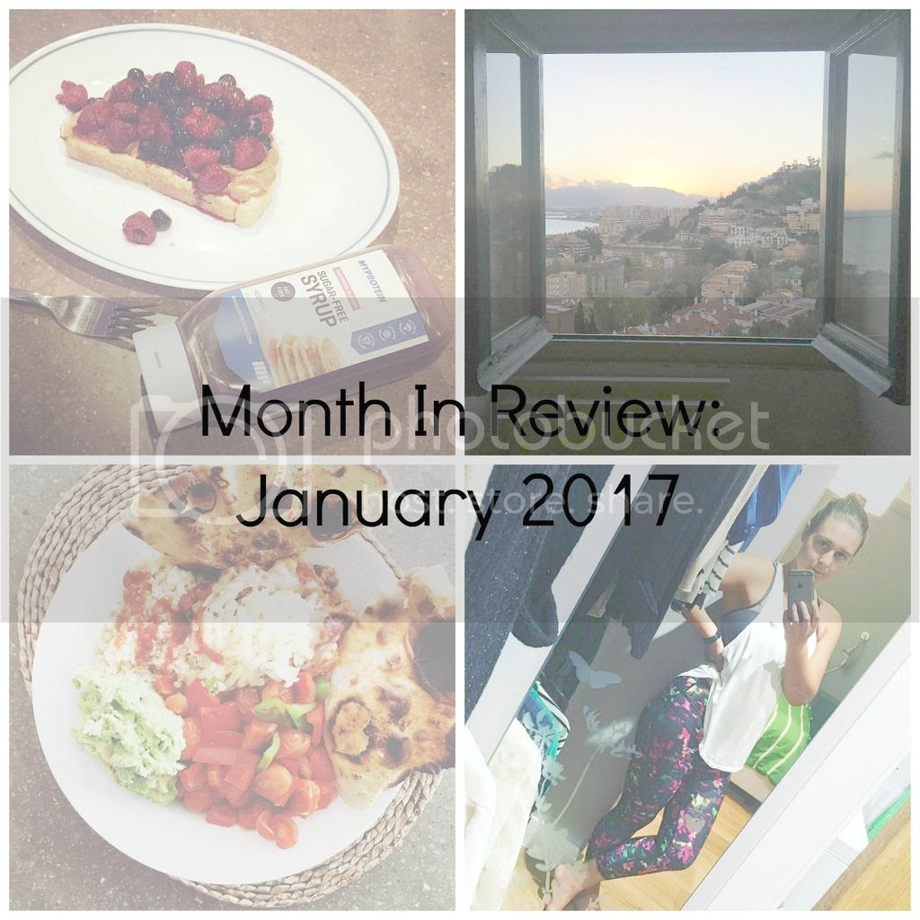 Month In Review Jan 2017 Cover photo Jan 2017 Review Cover_zpsnqjroni1.jpg