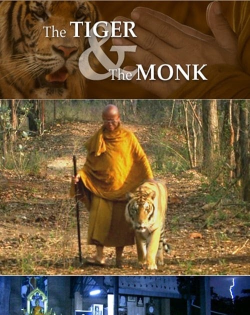 Ver The Tiger And The Monk Online 2007 Película Completa En Español Latino Subtitulado
