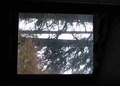 window-styll